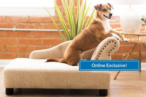 Shop NEW Pet Beds